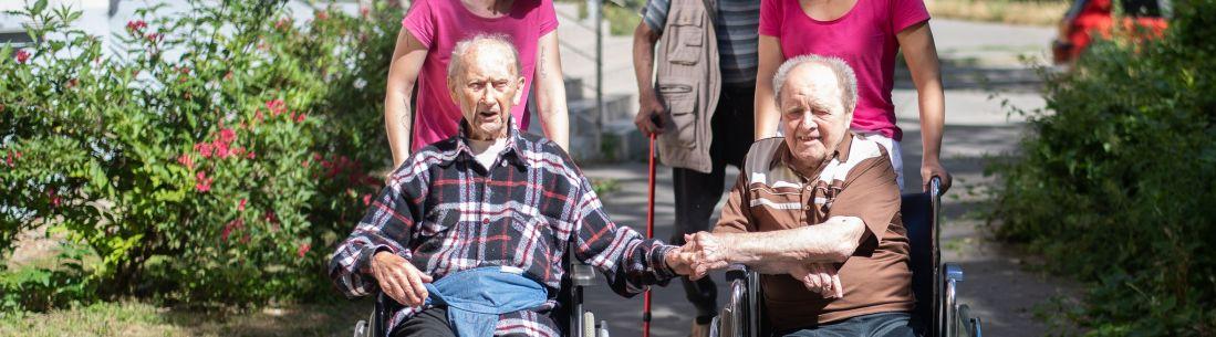 Alzheimerova choroba a demence