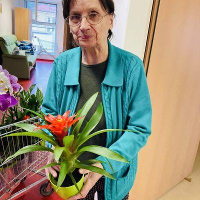 Darování květin firmou Ewing